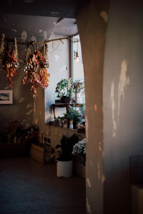 lisa agnelli, fotografa, interni, fotogr