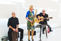 Akustik Trio Bosch.jpg
