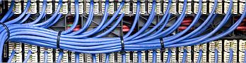 lowvoltage cable.png