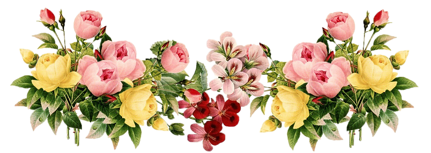 flowers-png-33.png