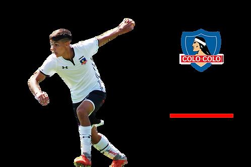 Pedro Navarro - Colo Colo