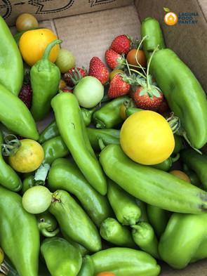 peppers_strawberries_lemons box.jpeg