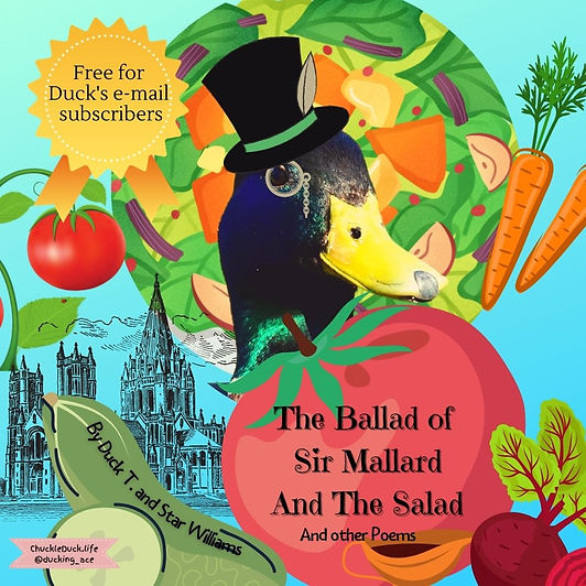 Copy of The Ballad Of Sir Mallard And Th