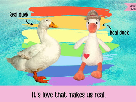 Duck T. On His Queer Feathers