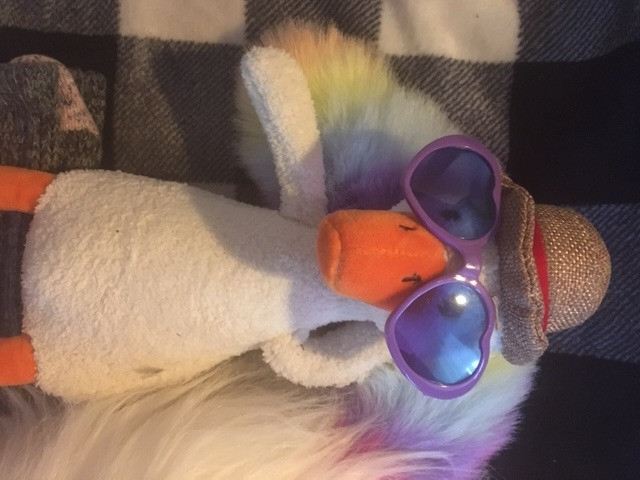 Duck is relaxing in sunglasses, with the fuzzy tail of a sleeping rainbow caticorn as his pillow