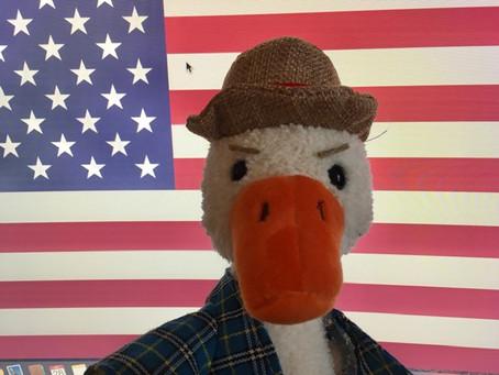 Duck Liberation Plan No. 22