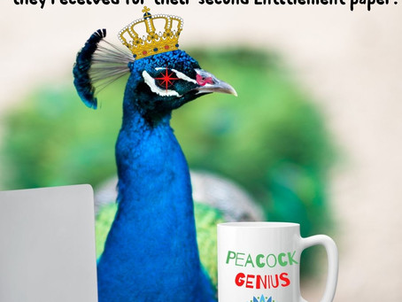 Peacock Riley's Entitlement Course: A Slippery Slope (Paved With Sticky Notes)