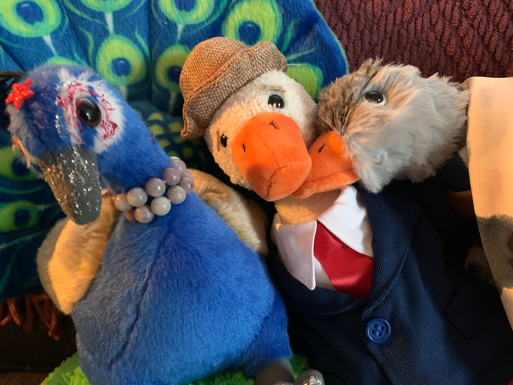 Peacock Riley, Duck T, and Goose Luce are huddled together happily—three stuffies.