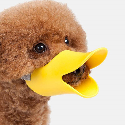 A dog wears a duck-bill mask that is wide open, exposing his nose and mouth