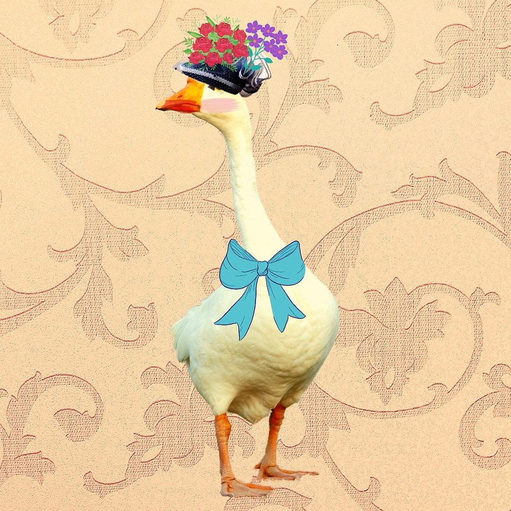 Wisteria Honkdom is pictured as a goose with a flowery hat, a bow around her neck, and make-up on her beak and face.