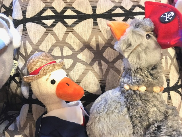Duck T. sits with Goose Luce, who wears a pirate's hat and stares upwards, her goose neck long.