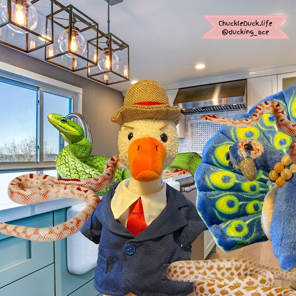 Duck and his partner Peacock Riley are in the kitchen, surrounded by coiling snakes.