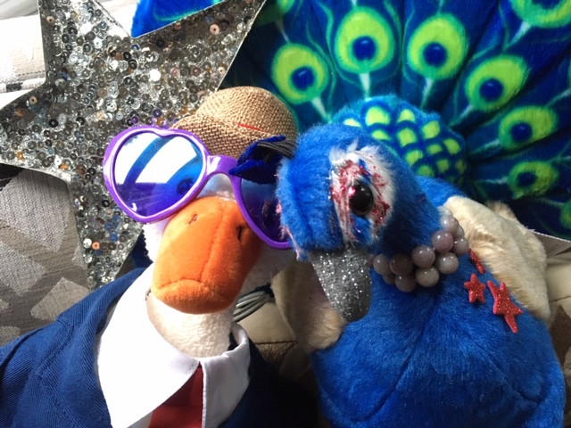 Duck is wearing heart-shaped sunglasses as he snuggles with Peacock Riley (both are soft toys)