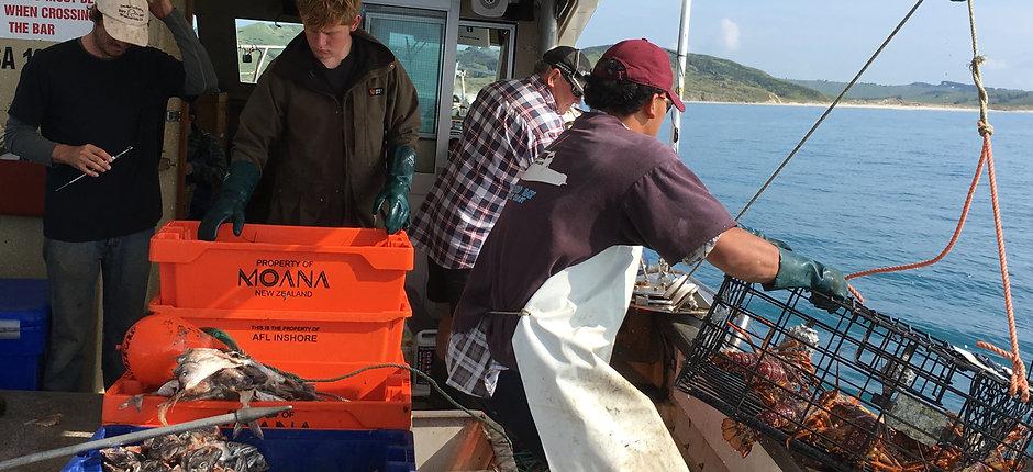 Lobster fisherman