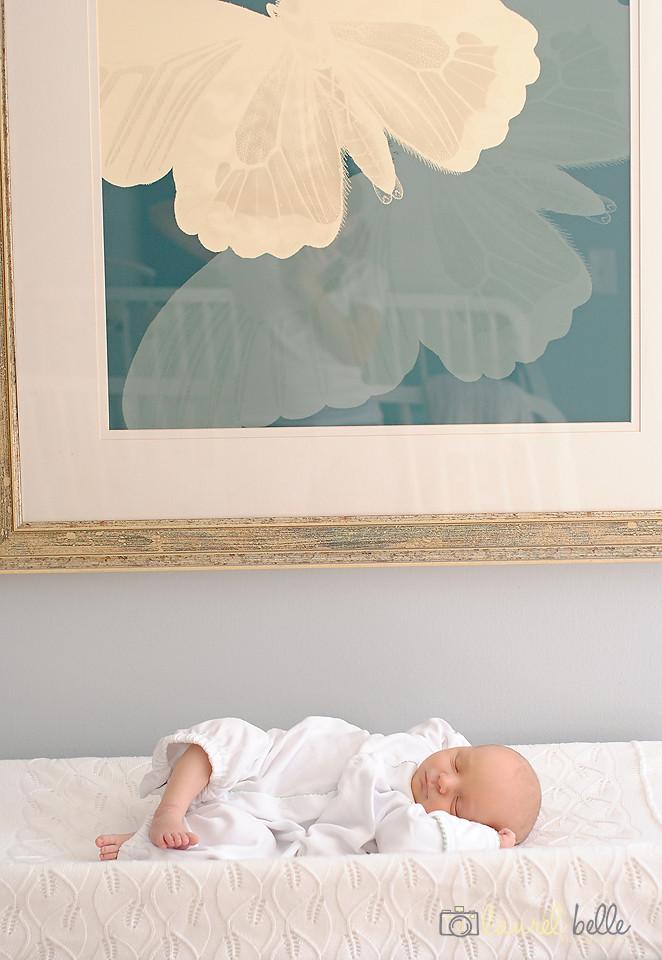 dilworth charlotte at home newborn photographer