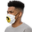 Thumbnail: Q Capone Face mask