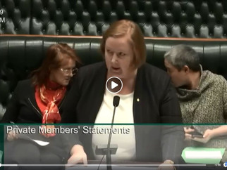 PRIVATE MEMBER'S STATEMENT - Govt continues to fail to prevent domestic violence