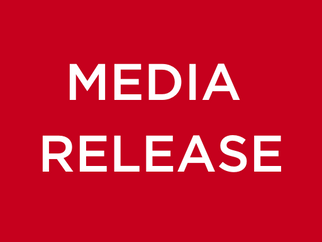 MEDIA RELEASE - NSW Budget: Hospital is great!  But Maitland Needs More Road & School Funding