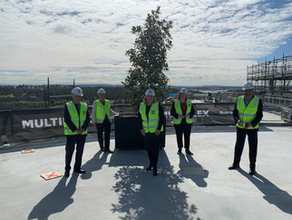 MEDIA RELEASE - New Maitland Hospital reaches new heights