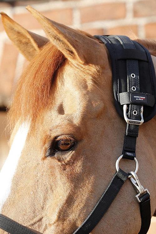 Premier Equine - Bande magnétique , tension de la nuque