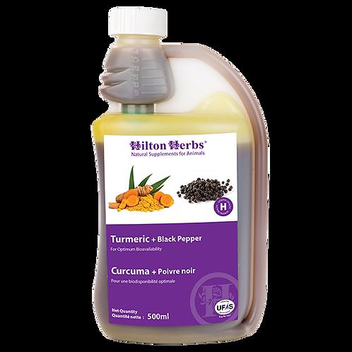 Hilton herbs - Curcuma +poivre noir