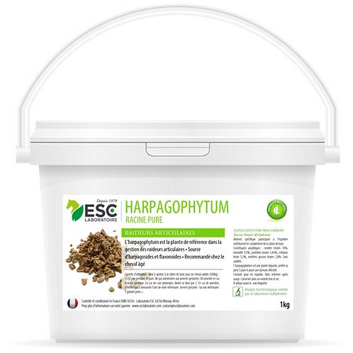 ESC Laboratoire - Harpagophytum – Arthrose et raideurs du cheval