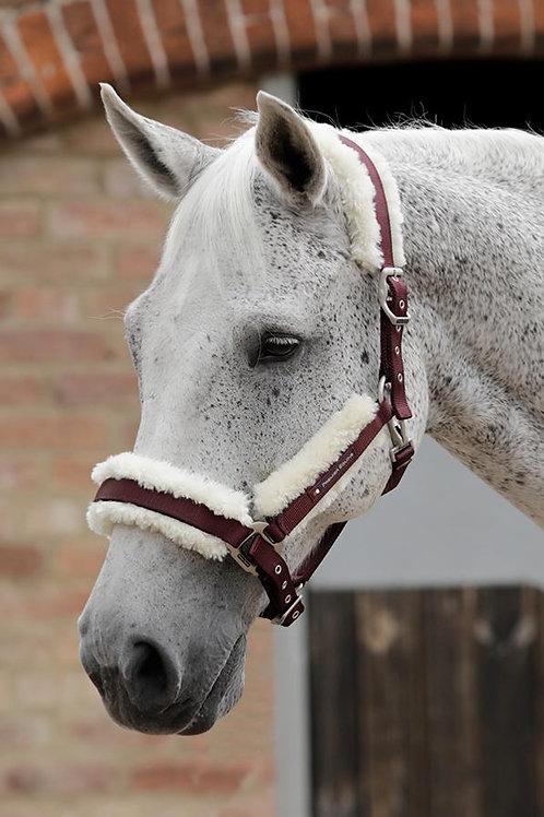 Premier Equine - Licol mouton détachable