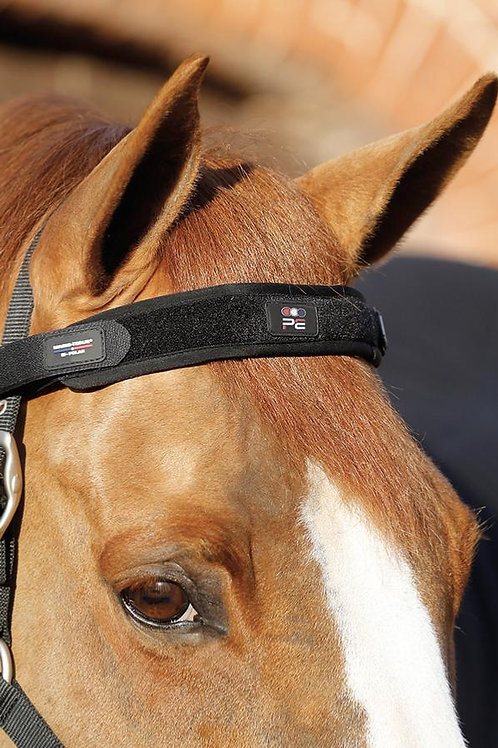 Premier Equine - Bande frontale magnétique