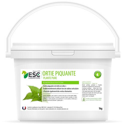 ESC Laboratoire - Ortie - Articulations et reminéralisation