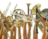 Iscirzione Corsi Filarmonica Città del Tricolore