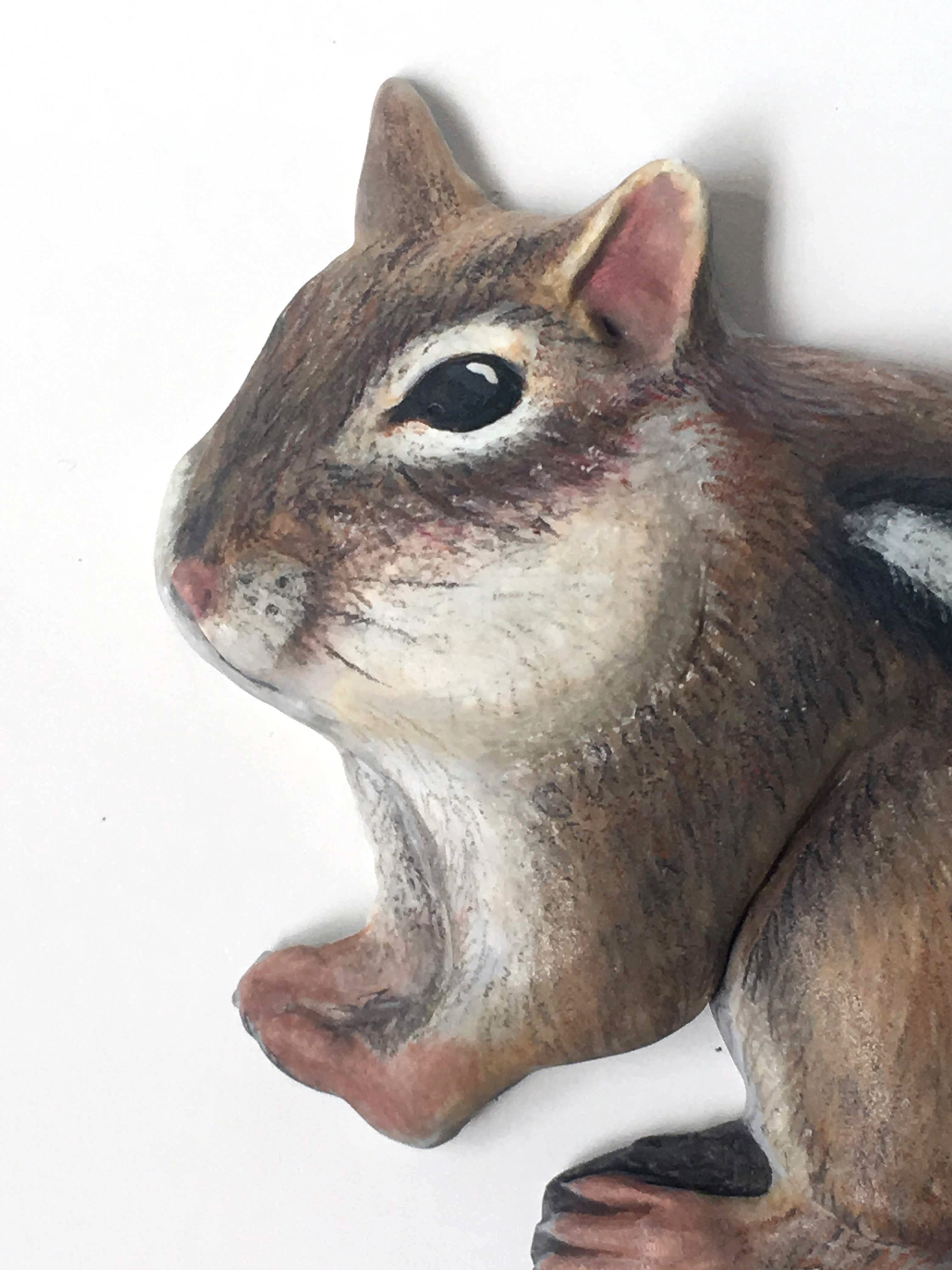 Chipmunk Detail