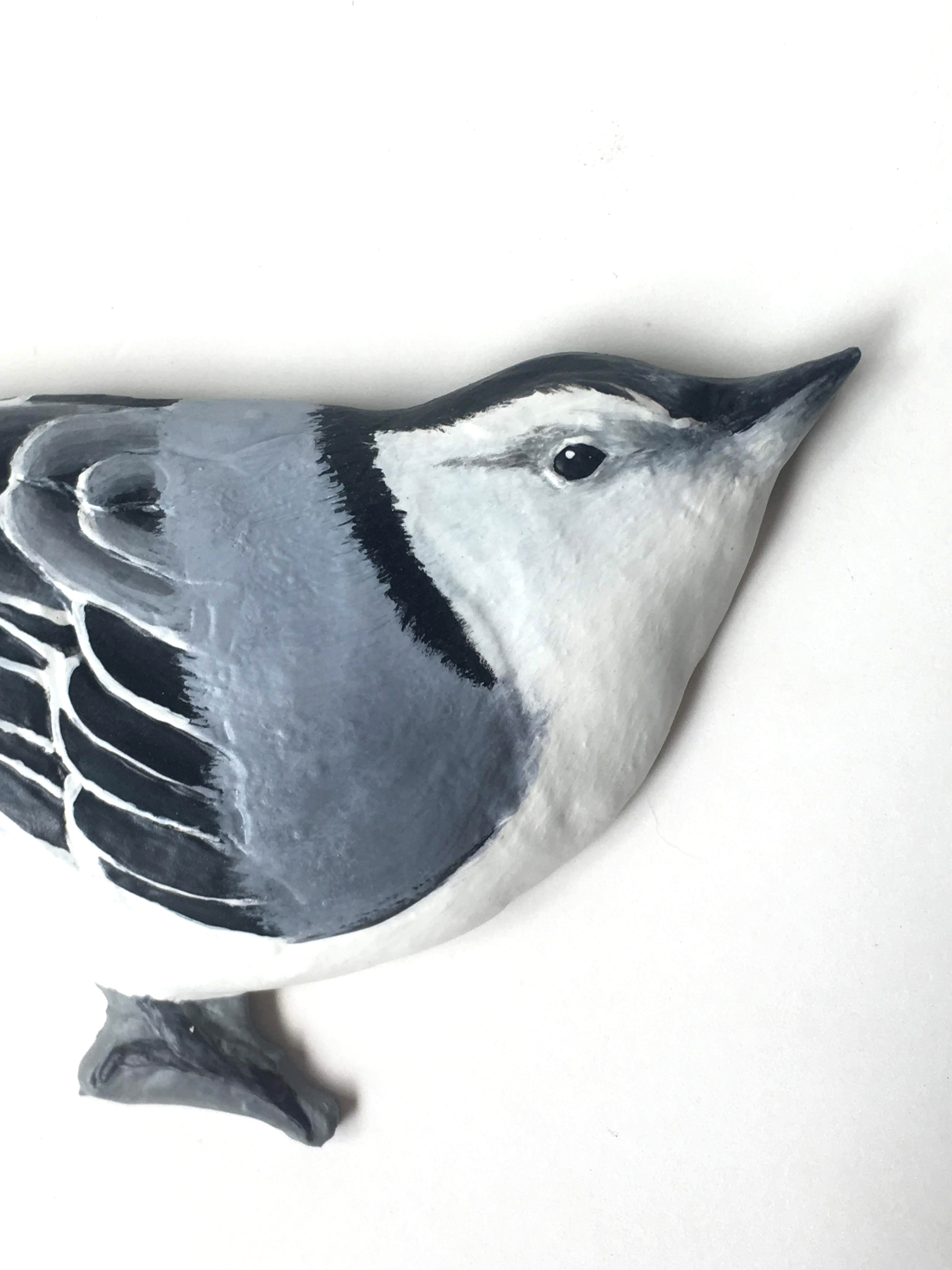Nuthatch Detail