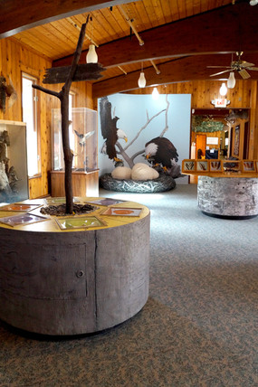 Barnes Nature Center