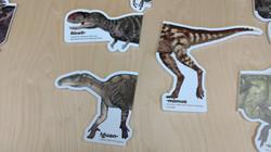 Dinosaur Magnet Puzzle