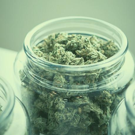 What will Recreational Marijuana Look like in New York?