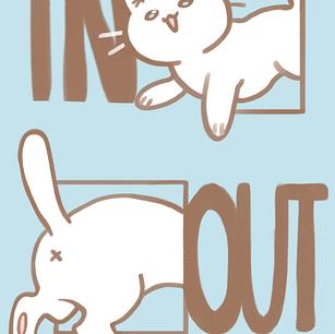 Indecisive Cat