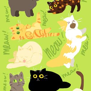 Meow Meow!