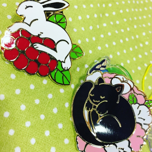 Raspbunny and Goodnya Pins