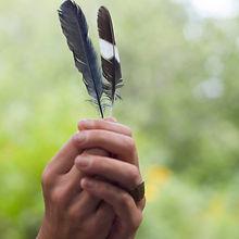 bluebird feather.  flicker feather.  heart chakra.  air element.