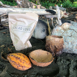 Cacao Ceremony Course