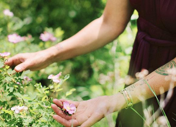 FREE Herb List & Benefits