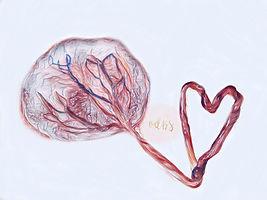 placenta-print, placenta-encapsulation, queen-creek-placenta, chandler-placenta, gilbert-placenta, scottsdale-placenta, east-valley-placenta, arizona-placenta