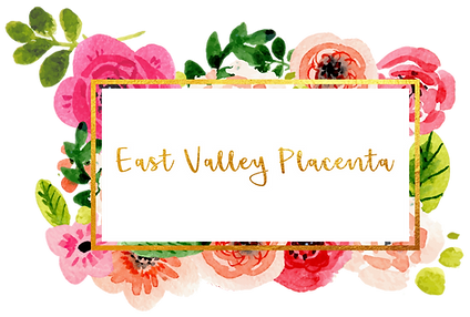 placenta-encapsulation, queen-creek-placenta, chandler-placenta, gilbert-placenta, scottsdale-placenta, east-valley-placenta, arizona-placenta