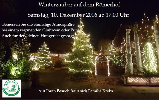 Winterzauber auf dem Römerhof