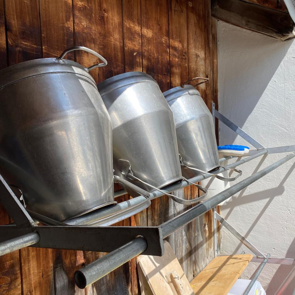 BiohofStuls_Melken auf der Alp.jpeg
