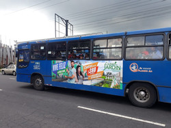 Publicidad en Buses Urbanos