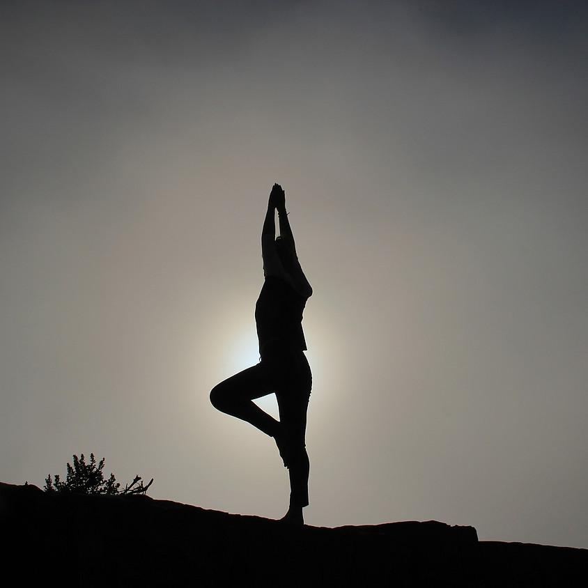 Journée Yoga et Conscience en plein air