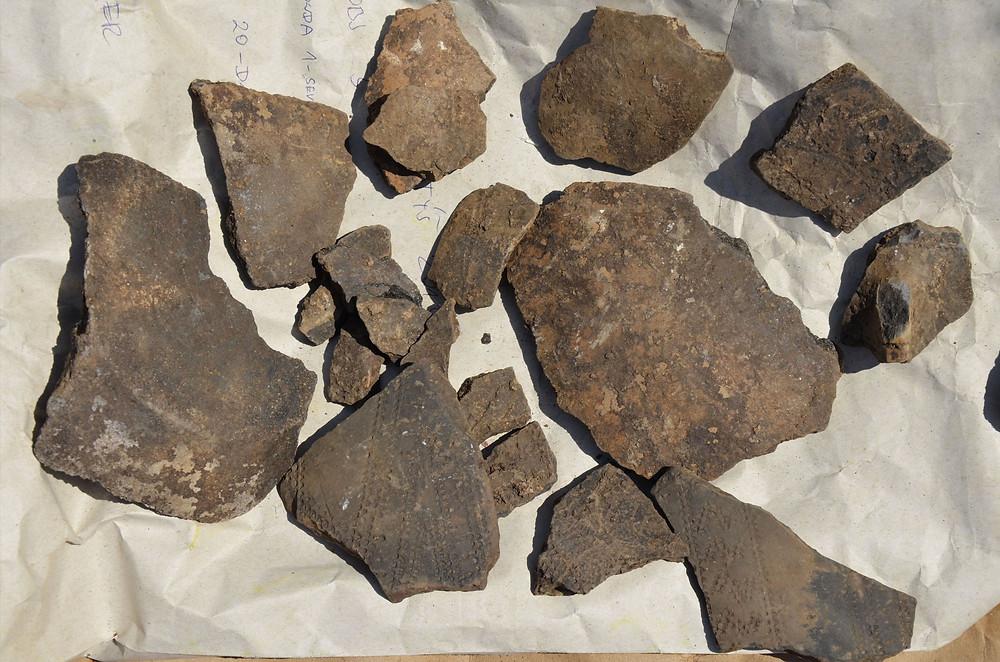 Keramické střepy kultury s vypíchanou keramikou, Chotýš. Foto ÚAPPSČ