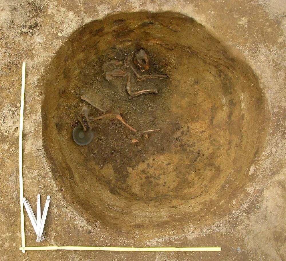 Nález ostatků psa s keramickou miskou. Foto archiv ÚAPPSČ