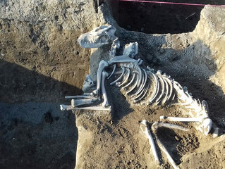 Pod pokličkou archeologie (4)